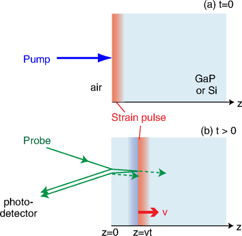 Thumbnail for Intrinsic coherent acoustic phonons in the indirect band gap semiconductors Si and GaP
