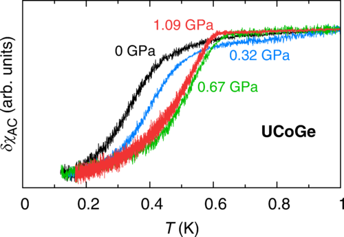 Enhancement of superconductivity by pressure-induced critical ferromagnetic fluctuations in UCoGe