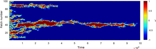 Моделирование возникновения хиральности в одномерной системе из рацемической смеси. Красным и синим показаны два стереоизомера. Время отложено по горизонтальной оси. Видно, что из полностью перемешанного сосотояния слева система перешла в чистое состояние справа.