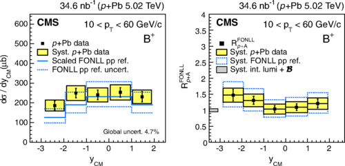 The yCM-differential production cross section of B+ measured in p+Pb collisions at √sNN = 5.02 TeV