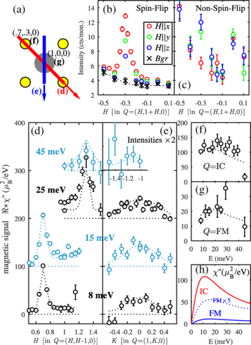 Spin Fluctuations in Sr2RuO4 from Polarized Neutron Scattering: Implications for Superconductivity